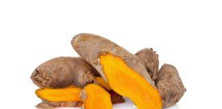 Por que não podemos combinar o açafrão-da-índia para um plano de dieta