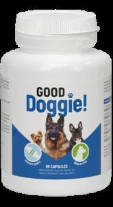 Good Doggie - funciona - preço - onde comprar em Portugal - comentarios - opiniões - farmacia