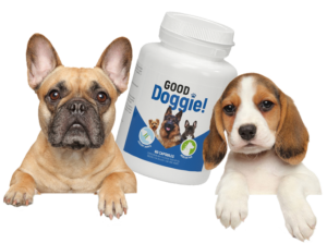 Good Doggie - ingredientes - como tomar - funciona